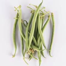 Green Carmellini® Beans