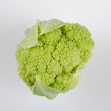 Alverdale Cauliflower