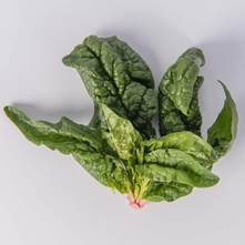Root Spinach