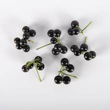 Huckleberry Currant Tomatoes