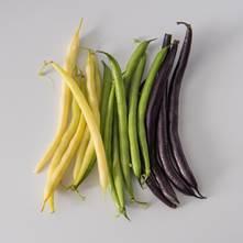 Mixed Wax Beans