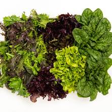 Leafy Greens Mix