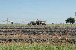 Field Preparation for Summer Crops Image