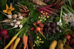 Brain Boosting Foods Include Farm-Fresh Vegetables Image