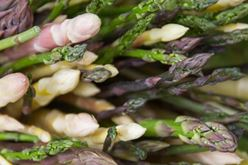 Asparagus - A Sure Sign of Spring Image