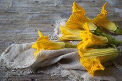 Edible Flowers 101 Image