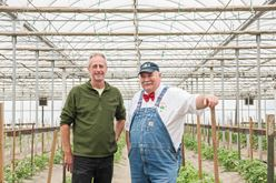 Innovations with Tomato Breeding: TCG Partners with Fred Hempel and Artisan Seeds Image