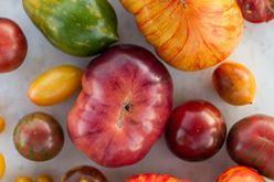 Tomato Tasting Menu Image