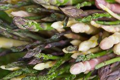 Versatility of Fresh Asparagus Image
