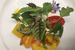Seasonality, Diversity and Culture Reign in Chef Roshan Martin's Kitchen Image
