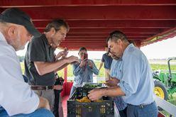 Landry's Chef Team Has Fun on the Farm Image