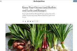 Food: New York Times Know Your Onions Image
