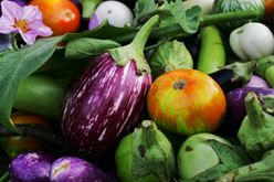 The Chef's Garden offering home-delivery vegetable boxes Image