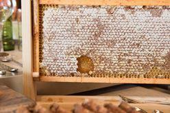 One Ingredient Four Ways: Honey Image