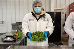 Cutting-Edge Technology Used in Hospitals to Purify Air has been Installed in the Farm