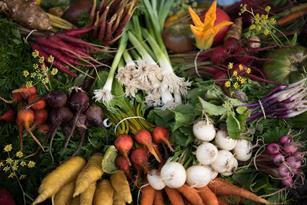 Enjoy Farm-Fresh Vegetables Without Ever Leaving Home Thumbnail