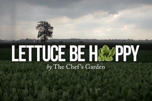 Lettuce Be Happy Thumbnail