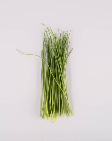 Micro Chives