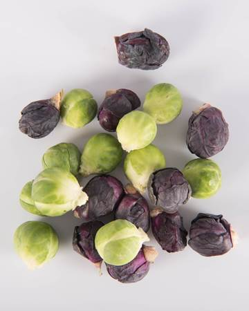 Cruciferous-Brussels Sprouts-Mixed Petite-Isolated