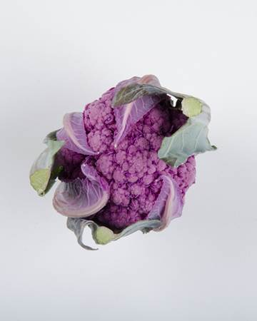 purple-cauliflower-isolated