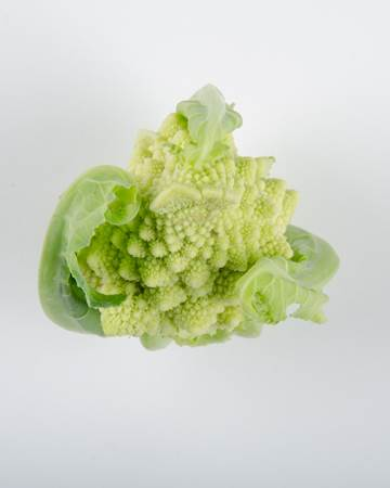 romanesco-cauliflower-isolated