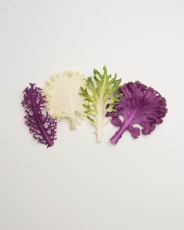 Cruciferous-Kale-Exotic-Ultra-Isolated