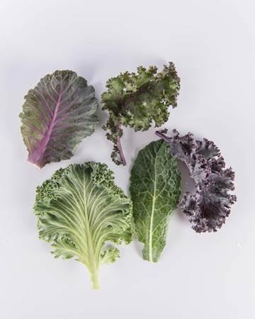 Kale-Exotic-Baby-Isolated
