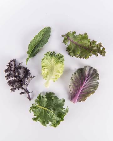Kale-Exotic-Ultra-Isolated