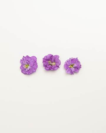 Edible-Flower-Mini-Floret-Lavender