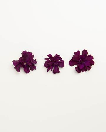 Edible-Flower-Mini-Floret-Plum