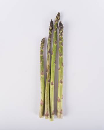 Asparagus-Green-Standard-Isolated