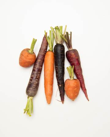 Carrots-Mixed-Young