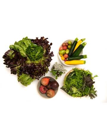 vegetable-BOX