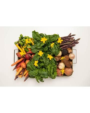 chefs-garden-vegetables