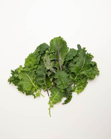 Kale-Mixed-Young