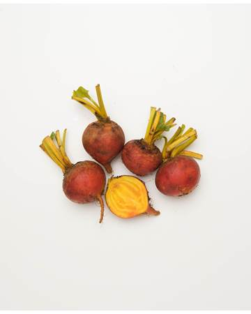 Beets-Gold-Young-1-of-1