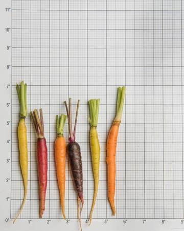 Ultra-Carrots-Size-Grid