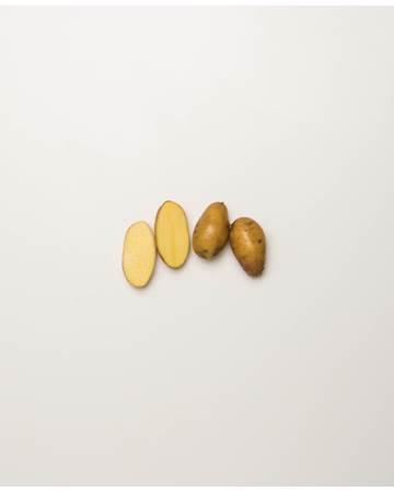 Potato-Austrailian-Cresent-E-1-of-1