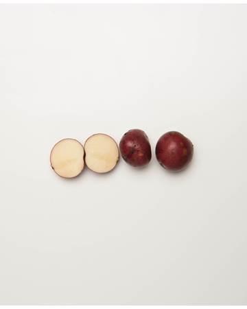 Potato-Dark-Red-Norland-B-1-of-1
