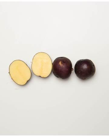 Potato-Huckleberry-B-1-of-1