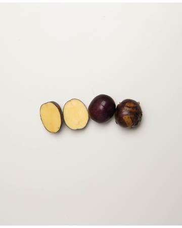 Potato-Huckleberry-C-1-of-1
