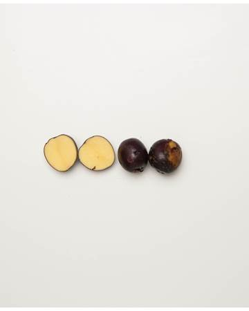 Potato-Huckleberry-D-1-of-1