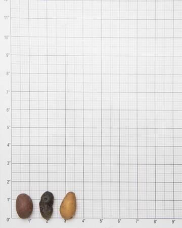 Potato-Fingerling-E-Size-1-of-1
