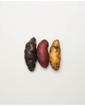 Potato-Mixed-Fingerling-B-1-of-1