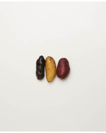 Potato-Mixed-Fingerling-D-1-of-1