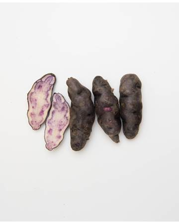 Potato-Fingerling-purple-B-1-of-1