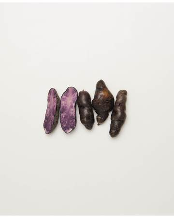 Potato-Fingerling-purple-D-1-of-1