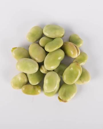 Shelled Fava Bean