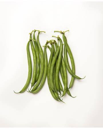Beans-Wax-Green-1-of-1