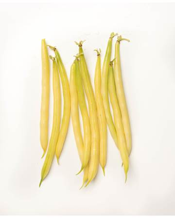 Beans-Wax-Yellow-1-of-1